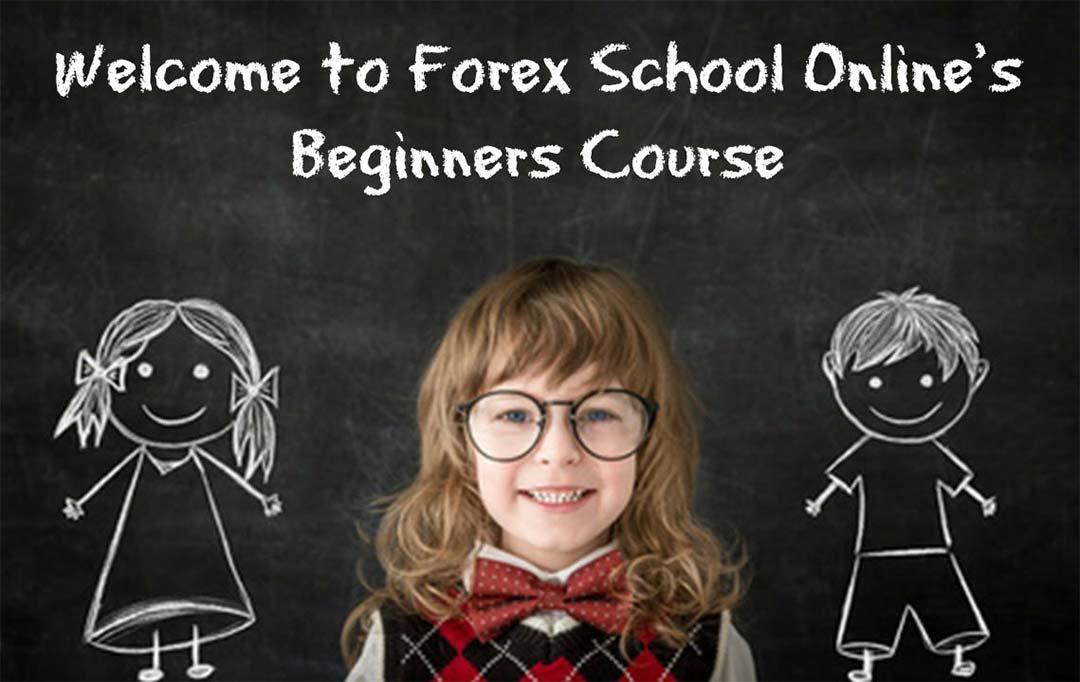 Торговля на Форекс для начинающих - как научиться зарабатывать 1